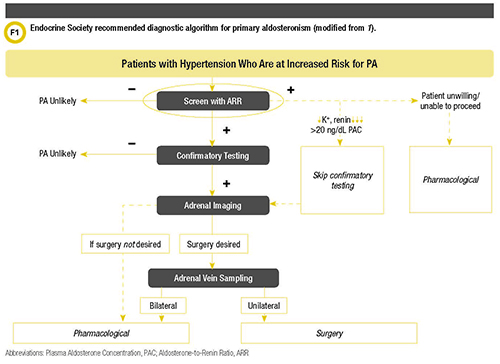 Practical Approaches to the Diagnosis of Primary