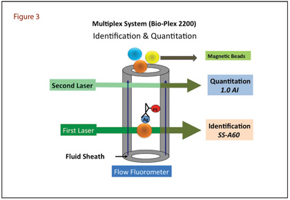 Multiplex System (Bio-Plex 2200) Identification and Quantitation