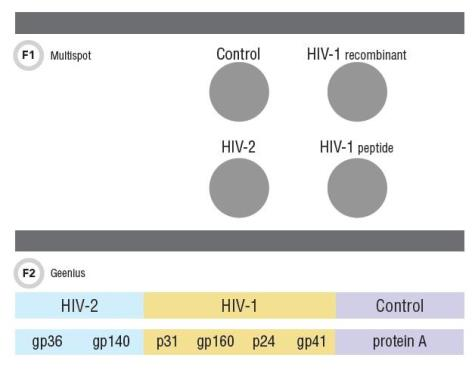 Laboratory Testing for HIV | AACC org